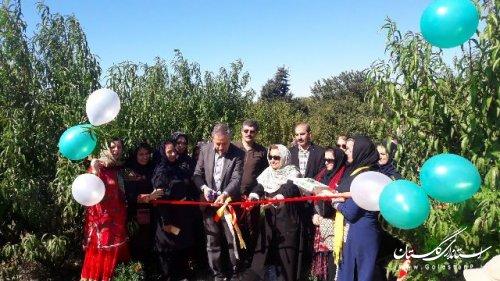 آغاز بکار نخستین مدرسه طبیعت درغرب استان گلستان