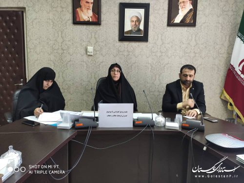 برگزاری اولین جلسه ویدئو کنفرانس با موضوع کمیته گسترش فرهنگ عفاف و حجاب