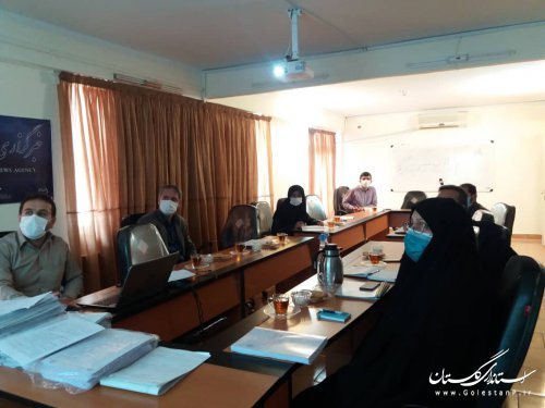 بازدیدمدیرکل اموراجتماعی وفرهنگی از برخی مشاغل خانگی درشهرستان آق قلا