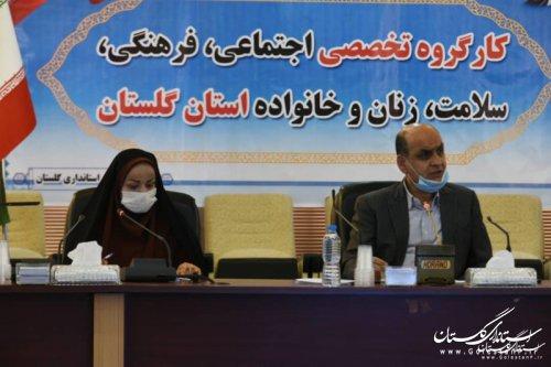 مدیرکل اموراجتماعی وفرهنگی باحضوراستاندار گلستان در جلسه کارگروه تخصصی اجتماعی, فرهنگی, سلامت,زنان و خانواده استان